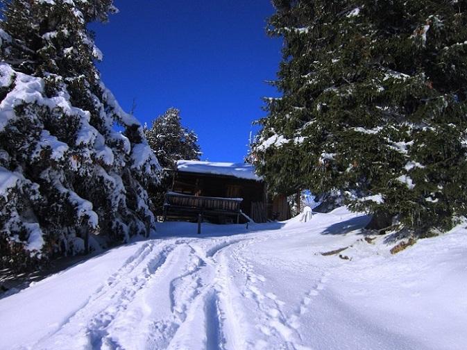 Foto: Andreas Koller / Skitour / Auracher Wildparktour Gaisberg (1798m) / 24.12.2018 15:26:31