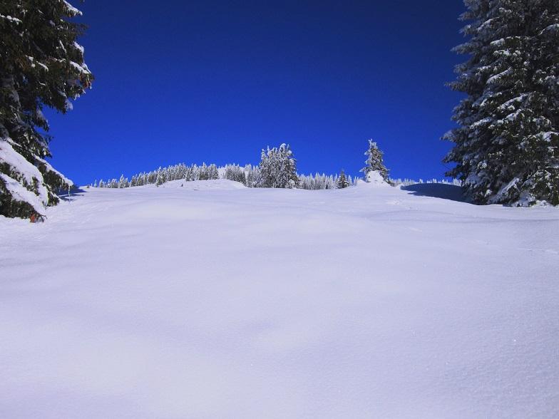 Foto: Andreas Koller / Skitour / Auracher Wildparktour Gaisberg (1798m) / 24.12.2018 15:26:23