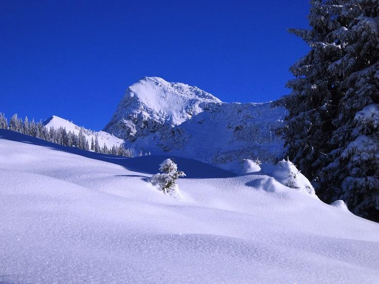 Foto: Andreas Koller / Skitour / Auracher Wildparktour Gaisberg (1798m) / 24.12.2018 15:26:05