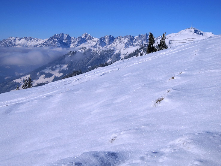 Foto: Andreas Koller / Skitour / Auracher Wildparktour Gaisberg (1798m) / 24.12.2018 15:25:56