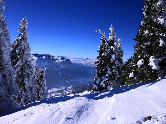 Foto: Andreas Koller / Skitour / Auracher Wildparktour Gaisberg (1798m) / 24.12.2018 15:11:53