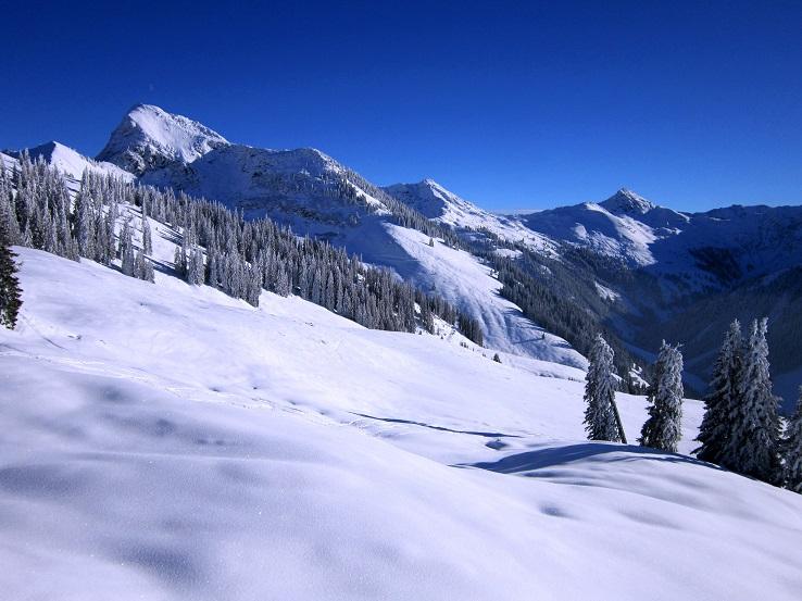 Foto: Andreas Koller / Skitour / Auracher Wildparktour Gaisberg (1798m) / 24.12.2018 15:11:44