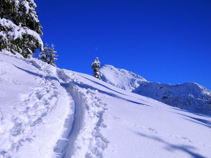 Foto: Andreas Koller / Skitour / Auracher Wildparktour Gaisberg (1798m) / 24.12.2018 15:10:58