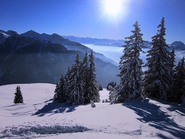 Foto: Andreas Koller / Skitour / Auracher Wildparktour Gaisberg (1798m) / 24.12.2018 15:10:00