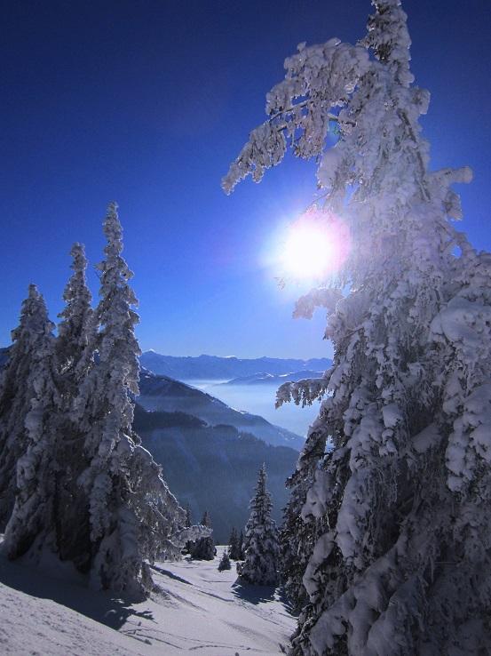 Foto: Andreas Koller / Skitour / Auracher Wildparktour Gaisberg (1798m) / 24.12.2018 15:08:42