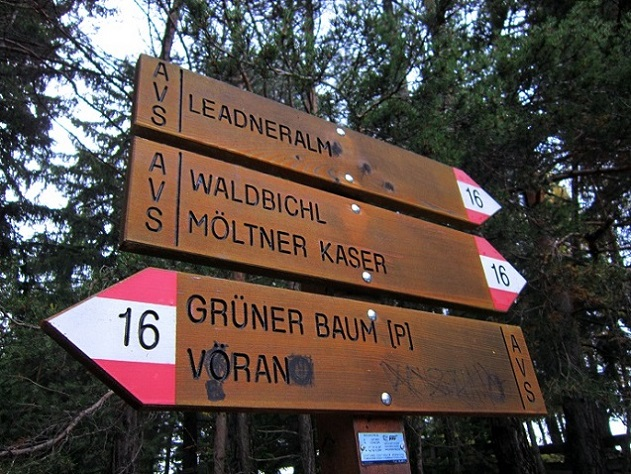 Foto: Andreas Koller / Wander Tour / Ausflug zur Leadner Alm (1530m) / 09.01.2019 02:36:53
