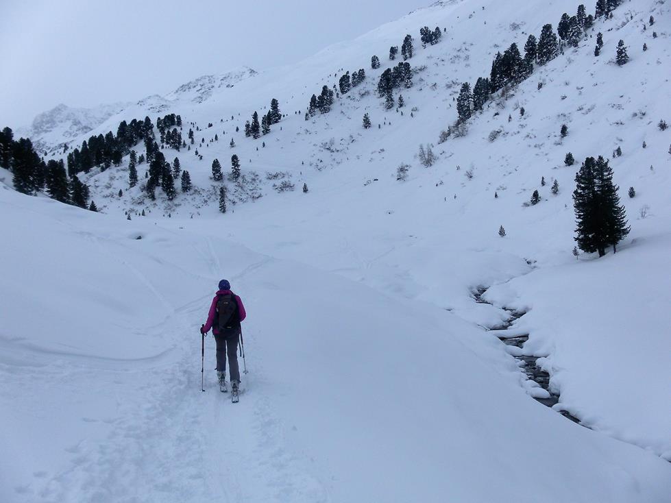 Foto: Wolfgang Lauschensky / Skitour / Angerbergkopf und Schaflegerkogel von der Kemater Alm / vor der Talenge rechts zu den freien Hängen / 26.01.2019 11:29:50
