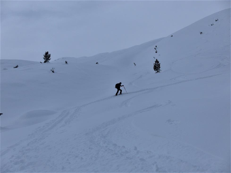 Foto: Wolfgang Lauschensky / Skitour / Angerbergkopf und Schaflegerkogel von der Kemater Alm / mittelsteile Skihänge / 26.01.2019 11:29:46