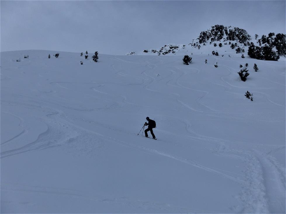 Foto: Wolfgang Lauschensky / Skitour / Angerbergkopf und Schaflegerkogel von der Kemater Alm / weite Hänge / 26.01.2019 11:29:42