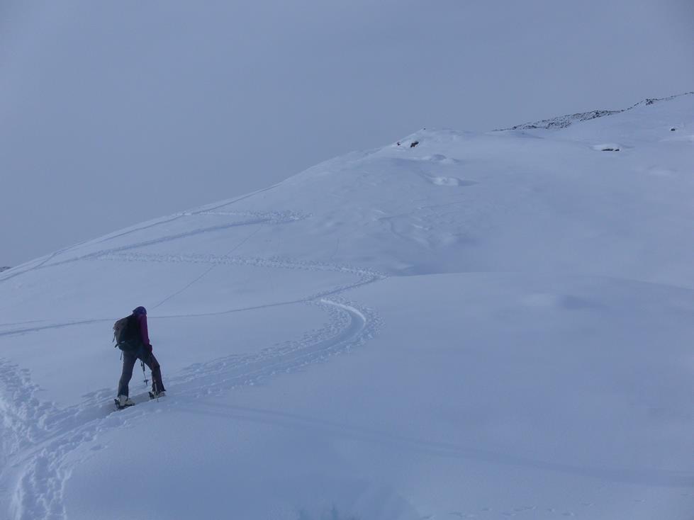 Foto: Wolfgang Lauschensky / Skitour / Angerbergkopf und Schaflegerkogel von der Kemater Alm / sanfte Hänge / 26.01.2019 11:29:30