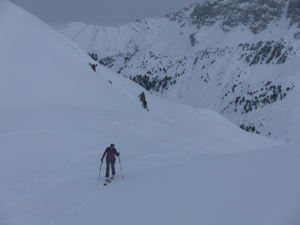 Foto: Wolfgang Lauschensky / Skitour / Angerbergkopf und Schaflegerkogel von der Kemater Alm / herrliche Mulden / 26.01.2019 11:29:08
