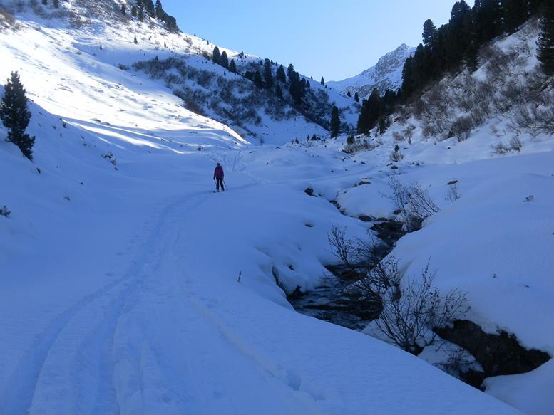 Foto: Wolfgang Lauschensky / Skitour / Angerbergkopf und Schaflegerkogel von der Kemater Alm / Senderstal / 26.01.2019 11:28:37