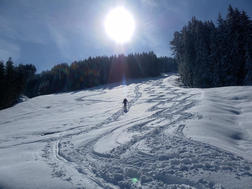 Foto: Wolfgang Lauschensky / Ski Tour / Kreuzjoch über Karspitze / Piste Nr.8 / 11.05.2019 14:44:38
