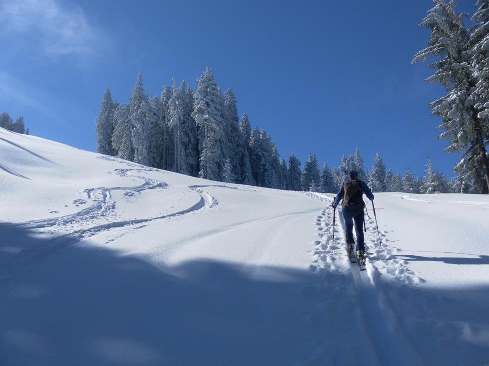 Foto: Wolfgang Lauschensky / Ski Tour / Kreuzjoch über Karspitze / sanfter Anstieg / 11.05.2019 14:44:27