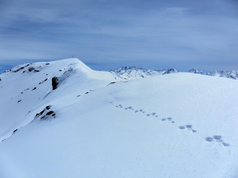 Foto: Wolfgang Lauschensky / Ski Tour / Kreuzjoch über Karspitze / Gipfelkamm und Reichenspitzgruppe / 11.05.2019 14:43:31