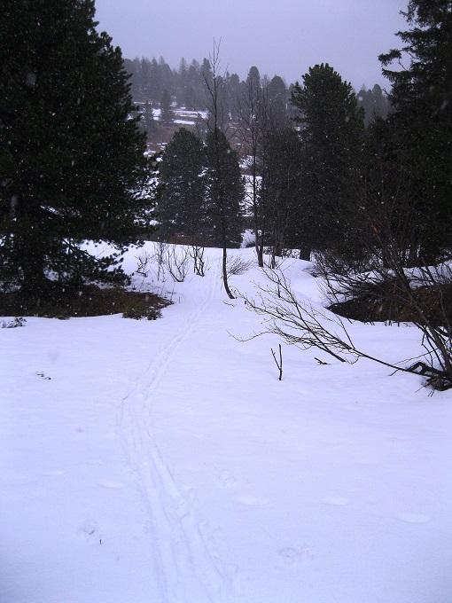 Foto: Andreas Koller / Ski Tour / Trainingstour Kornock (2193m) / 12.05.2019 17:04:03