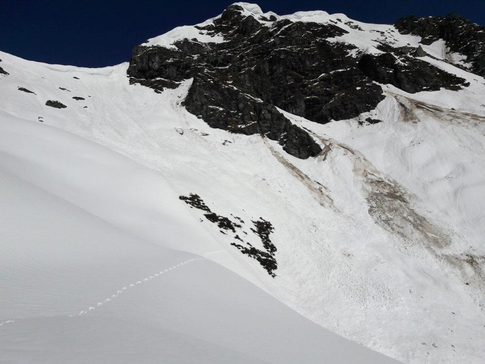 Foto: Rupert Gredler / Skitour / Seekareck frühsommerlich / Die Seekarschneid / 20.06.2019 16:56:02