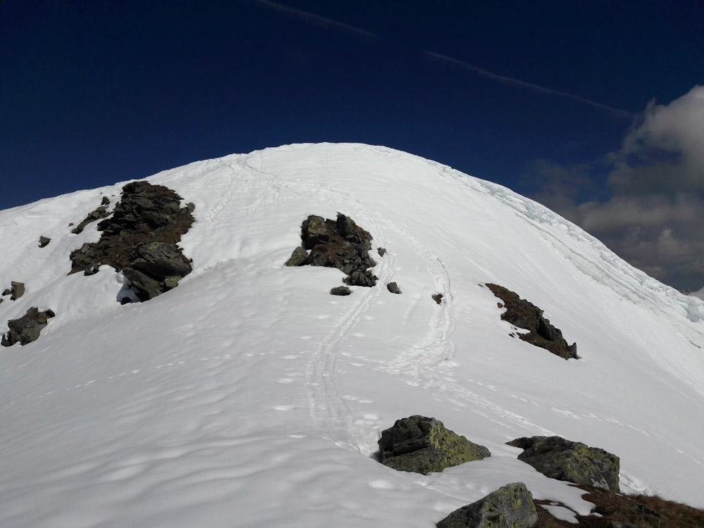 Foto: Rupert Gredler / Skitour / Seekareck frühsommerlich / Die letzten Meter / 20.06.2019 16:55:01