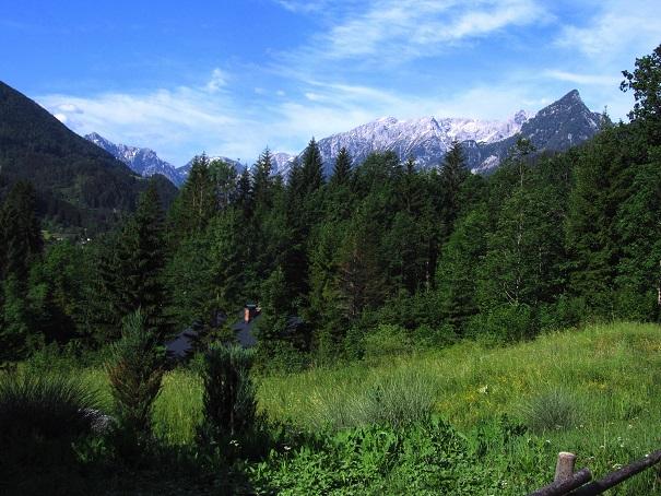Foto: Andreas Koller / Wandertour / Kleiner Priel - steile Tour über Hinterstoder (2136m) / 30.08.2019 01:49:28