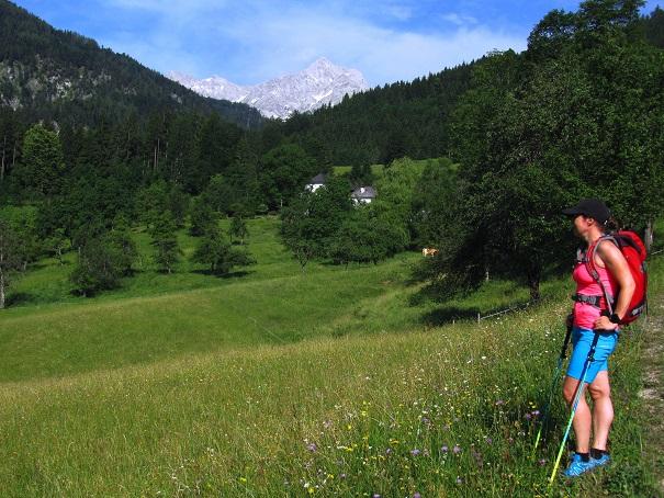 Foto: Andreas Koller / Wandertour / Kleiner Priel - steile Tour über Hinterstoder (2136m) / 30.08.2019 01:49:22