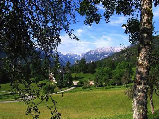 Foto: Andreas Koller / Wandertour / Kleiner Priel - steile Tour über Hinterstoder (2136m) / 30.08.2019 01:48:53