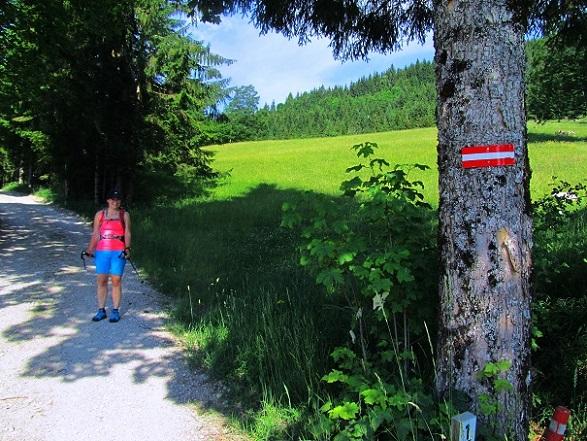 Foto: Andreas Koller / Wandertour / Kleiner Priel - steile Tour über Hinterstoder (2136m) / 30.08.2019 01:48:47