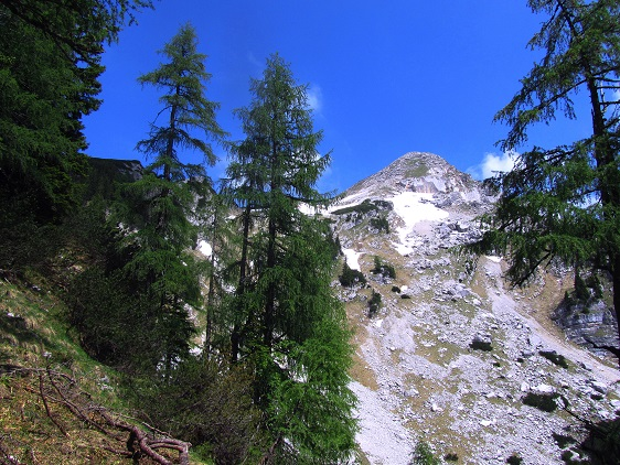 Foto: Andreas Koller / Wandertour / Kleiner Priel - steile Tour über Hinterstoder (2136m) / Zum ersten Mal zeigt sich der Kleine Priel sehr deutlich / 30.08.2019 01:47:33