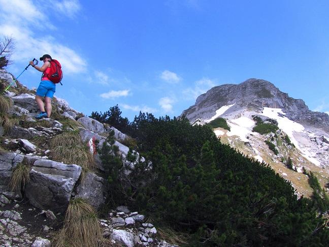 Foto: Andreas Koller / Wandertour / Kleiner Priel - steile Tour über Hinterstoder (2136m) / 30.08.2019 01:46:33