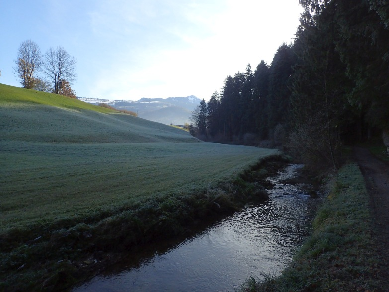 Foto: Manfred Karl / Wandertour / Adneter Moos Erlebnis- und Rundwanderweg / Am Spumbach entlang / 18.11.2019 06:24:32