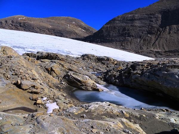 Foto: Andreas Koller / Wandertour / Über leichte Gletscher auf den Breitkopf (3154m) / 30.11.2019 01:18:38