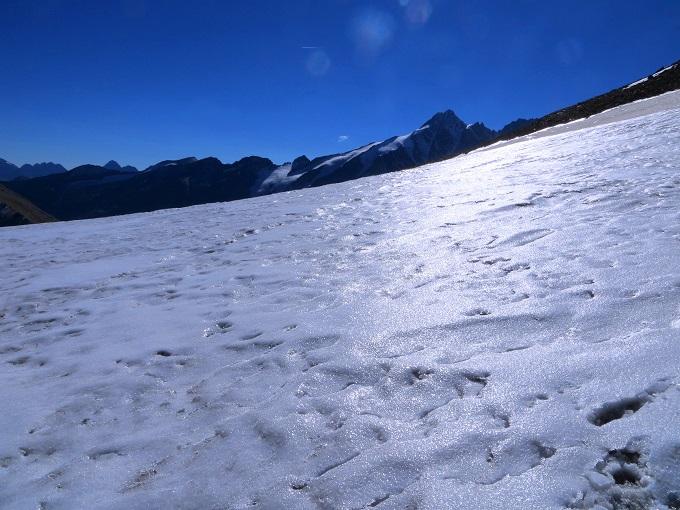 Foto: Andreas Koller / Wandertour / Über leichte Gletscher auf den Breitkopf (3154m) / 30.11.2019 01:12:40
