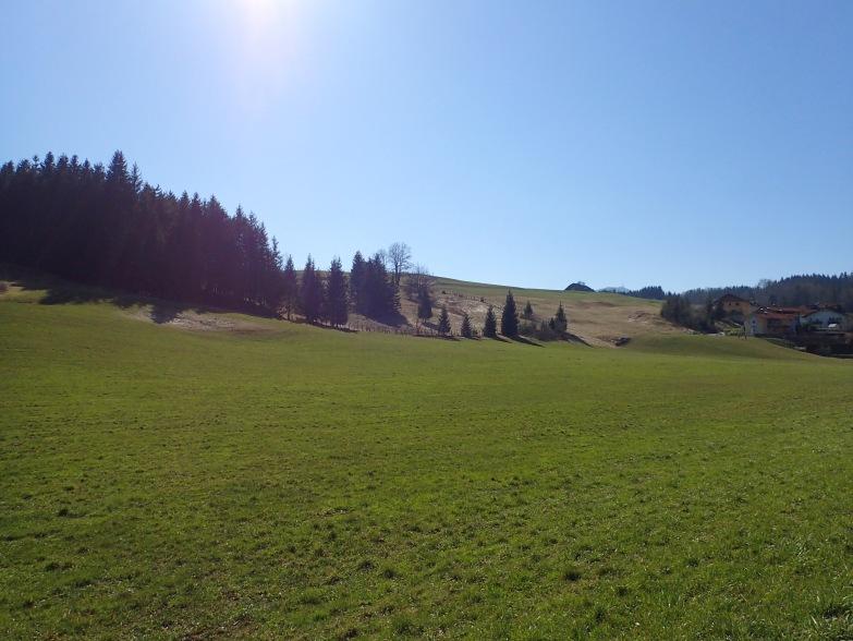 Foto: Manfred Karl / Wandertour / Gitzenberg, 918 m / Zurück beim Ausgangspunkt / 28.05.2020 19:49:33
