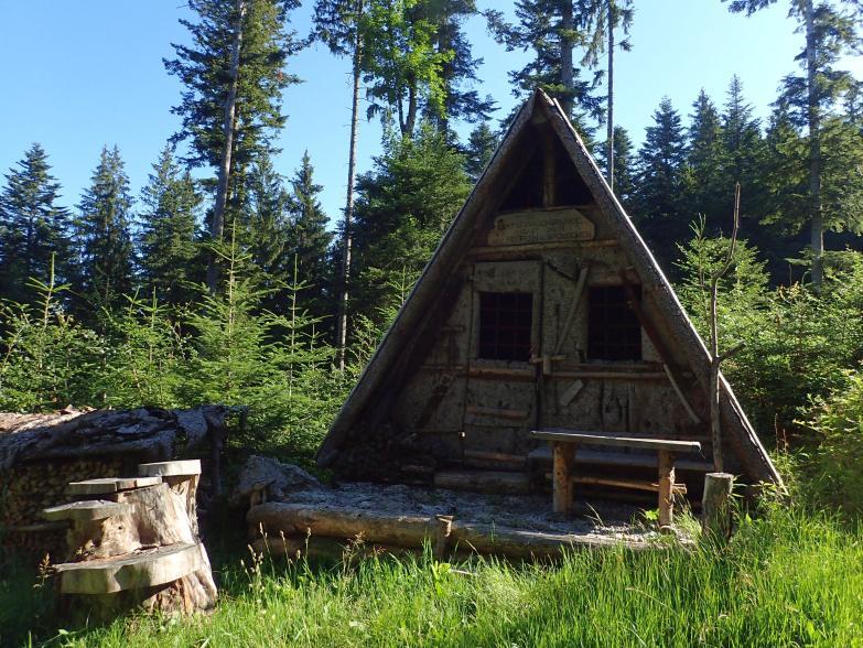 Foto: Manfred Karl / Wandertour / Lidaunberg von Hof / Rindenhütte für Holzknechte / 03.08.2020 06:38:17