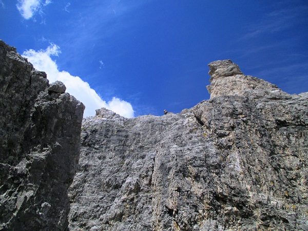 Foto: Andreas Koller / Klettersteigtour / Nordwand-Klettersteig Elferturm (2499m) / 09.07.2020 18:36:51