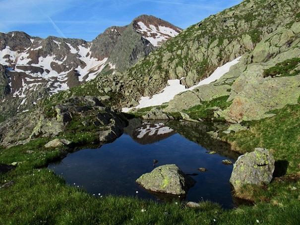 Foto: Andreas Koller / Wandertour / TG Pflerschtal3: Schneespitze (3178m) / 31.07.2020 15:56:43