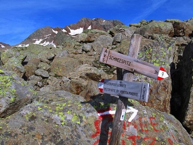 Foto: Andreas Koller / Wandertour / TG Pflerschtal3: Schneespitze (3178m) / 31.07.2020 15:56:32