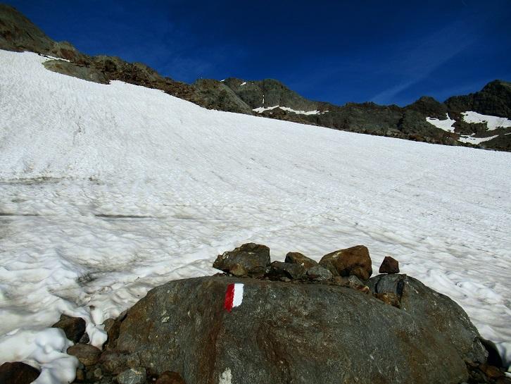 Foto: Andreas Koller / Wandertour / TG Pflerschtal3: Schneespitze (3178m) / 31.07.2020 15:56:10