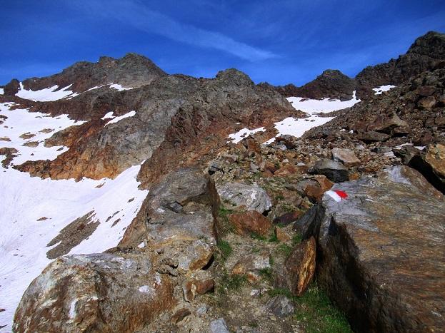 Foto: Andreas Koller / Wandertour / TG Pflerschtal3: Schneespitze (3178m) / 31.07.2020 15:55:38