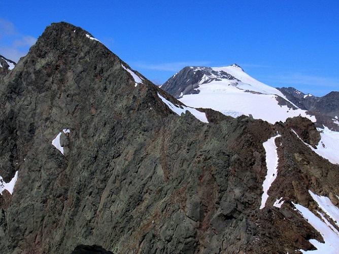 Foto: Andreas Koller / Wandertour / TG Pflerschtal3: Schneespitze (3178m) / 31.07.2020 15:52:59