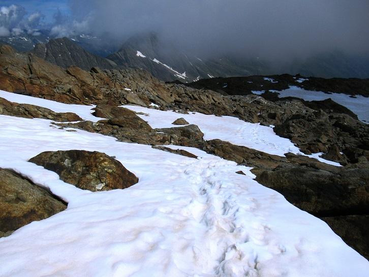 Foto: Andreas Koller / Wandertour / TG Pflerschtal3: Schneespitze (3178m) / Abstieg von der Schneespitze / 31.07.2020 15:52:37