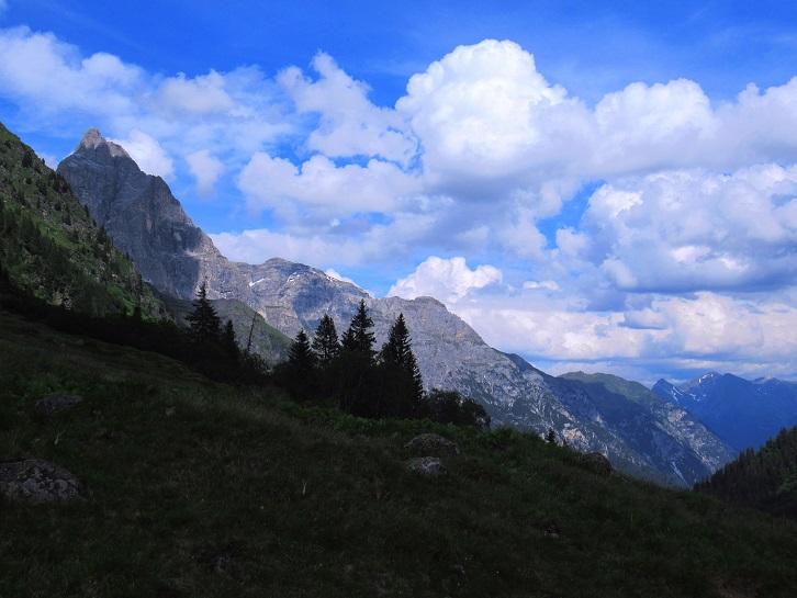Foto: Andreas Koller / Wandertour / TG Pflerschtal3: Schneespitze (3178m) / 31.07.2020 15:50:04