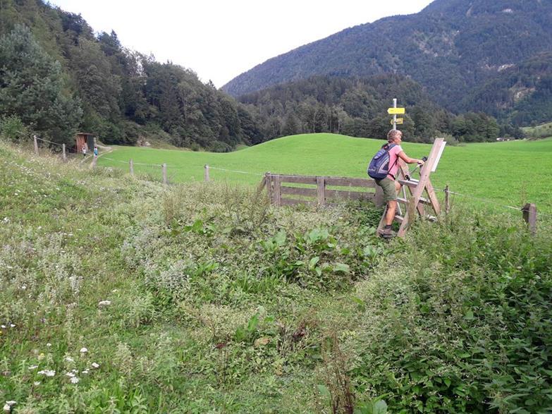 Foto: Wolfgang Lauschensky / Wandertour / Wöhrer Köpfl 782m Überschreitung / Zaunüberstieg zum Höhenweg Schwoich / 29.08.2020 20:22:49