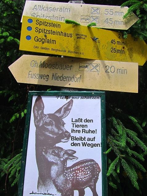 Foto: Andreas Koller / Wandertour / Grenzberg Spitzstein vom Erlerberg (1596m) / 30.09.2020 23:00:38