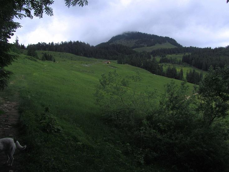 Foto: Andreas Koller / Wandertour / Grenzberg Spitzstein vom Erlerberg (1596m) / 30.09.2020 23:00:29