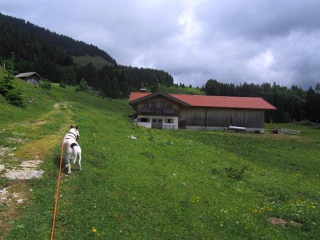 Foto: Andreas Koller / Wandertour / Grenzberg Spitzstein vom Erlerberg (1596m) / 30.09.2020 23:00:09