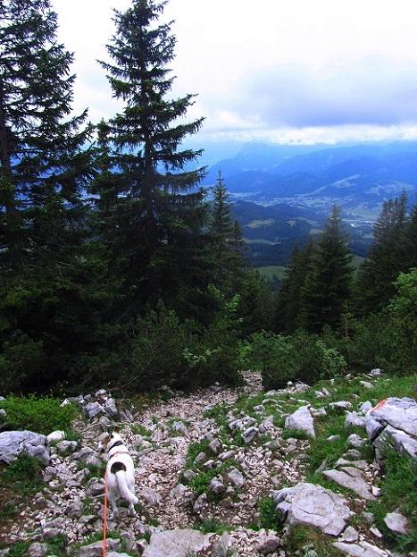 Foto: Andreas Koller / Wandertour / Grenzberg Spitzstein vom Erlerberg (1596m) / Abstieg vom Spitzstein / 30.09.2020 22:55:04