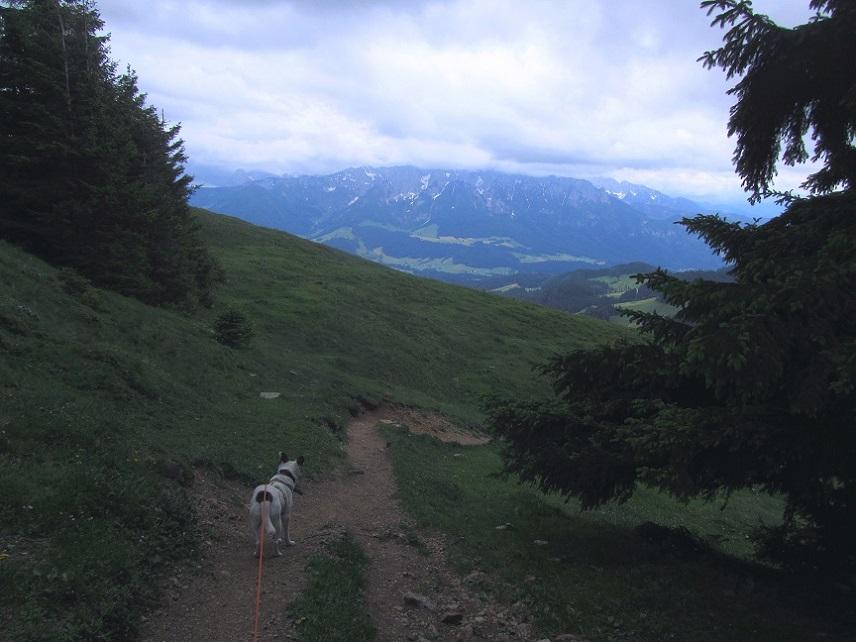 Foto: Andreas Koller / Wandertour / Grenzberg Spitzstein vom Erlerberg (1596m) / 30.09.2020 22:54:37