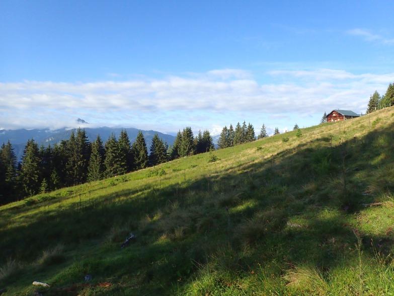 Foto: Manfred Karl / Wandertour / Schneebergkreuz von Goldeggweng / Schrempfalm / 14.10.2020 07:34:07