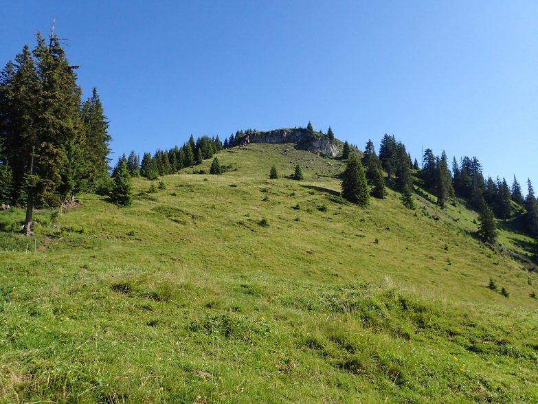 Foto: Manfred Karl / Wandertour / Schneebergkreuz von Goldeggweng / Aufstieg zum Gamskögerl / 14.10.2020 07:32:12