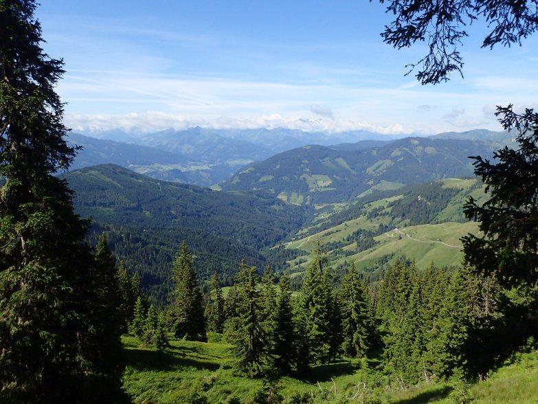 Foto: Manfred Karl / Wandertour / Schneebergkreuz von Goldeggweng / 14.10.2020 07:28:31